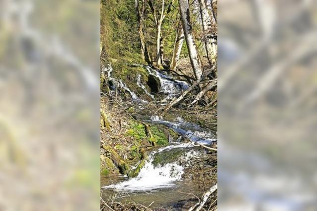 Naturschauspiel Wasserfall
