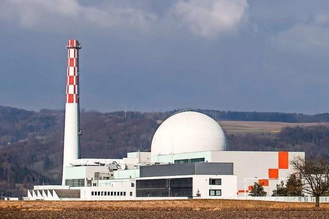 Das Kernkraftwerk Leibstadt wird für fünf Monate heruntergefahren