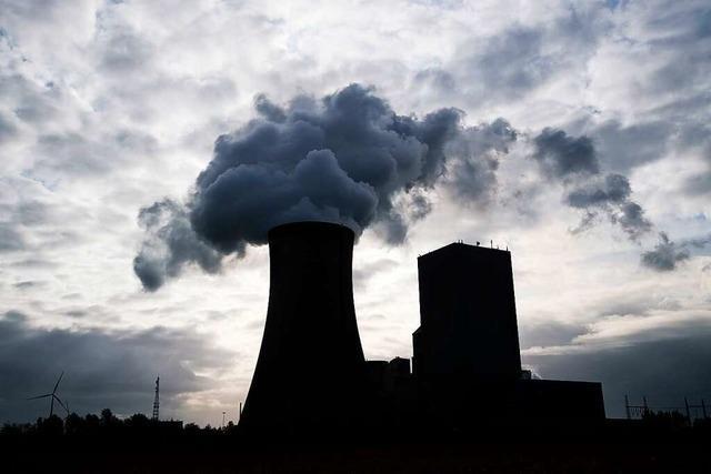 Wie einige große Banken das Klima schützen wollen