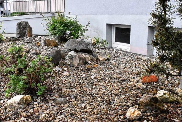 Stadt Lörrach will verstärkt gegen Schottergärten vorgehen