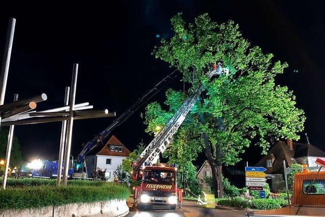 Erneut drohte mächtiges Baumstück in Heitersheim auf die Straße zu stürzen