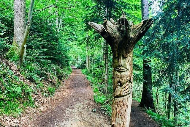 Um den Lorettoberg wandern und den Spuren der Waldmenschen folgen