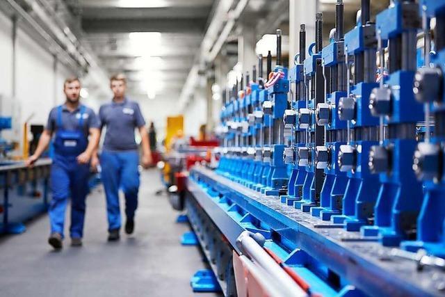 Schopfheimer Unternehmen Dreistern holt sich Hilfe für den Anlagen-Export