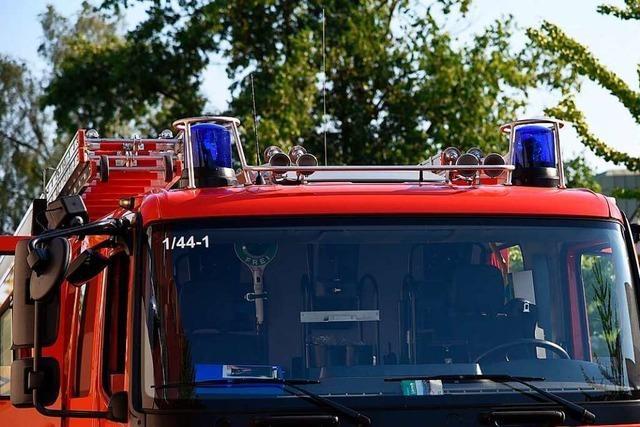 Feuerwehr löscht mit 85 Mann einen Flächenbrand bei Steinen