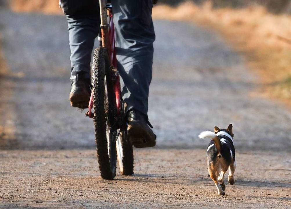 Freilaufende Hunde können für Radfahre... eine oder andere Halter anders sieht.  | Foto: Frank Rumpenhorst