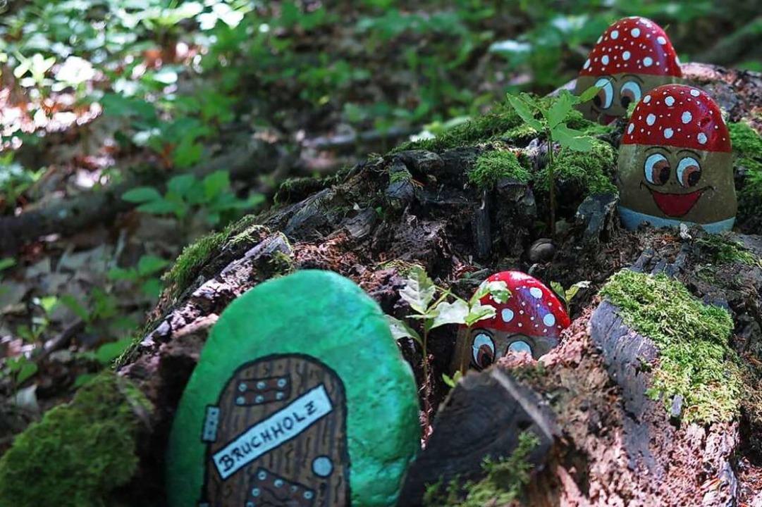 Ein Versteck im Totholz...  | Foto: Dorothee Philipp