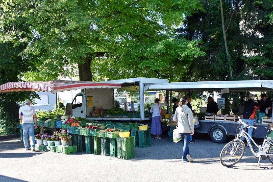 Der Wochenmarkt in Wyhlen zieht viele Kunden an.    Foto: Horatio Gollin
