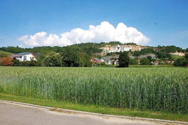 Holpriger Start mit Bauplatzvergaberichtlinien in Efringen-Kirchen