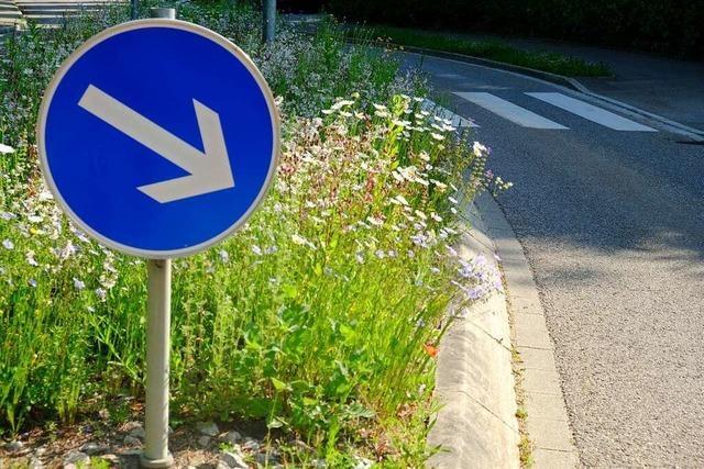 Müllheimer Kreisel bieten Blütenpracht fürs Auge und Futter für Insekten