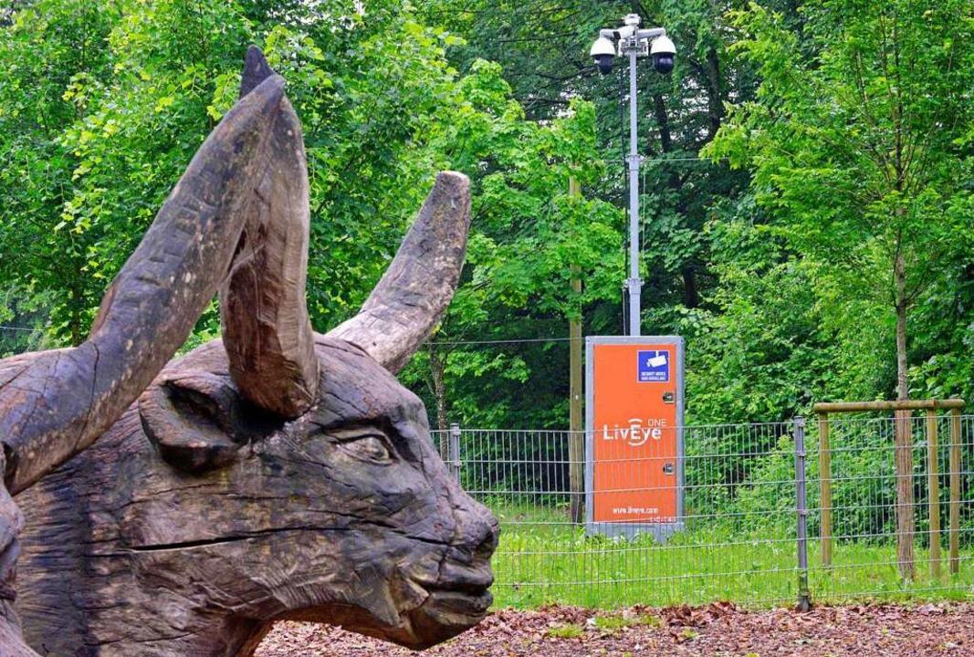 Ganz in der Nähe des Ochsengespann-Spi...rengruppe) steht der Überwachungsmast.  | Foto: Michael Bamberger