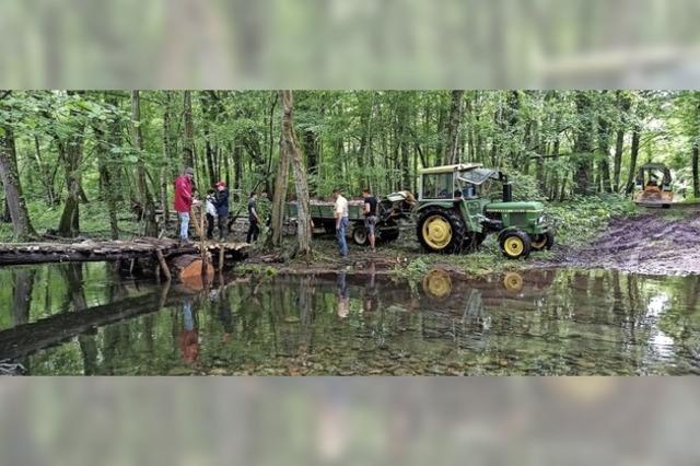 Brückenschlag im Taubergießen lässt Gemeinschaft erleben