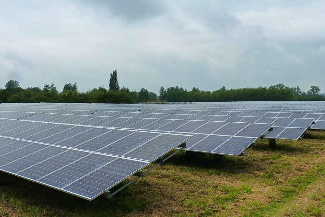 Ein Vorbild für Ihringen? Zwischen Ach...h sind es um die acht Megawattstunden.  | Foto: sattelberger