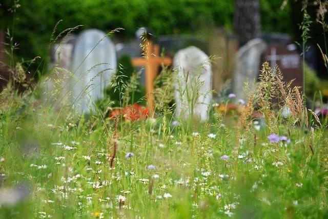 Am Ende blüht es auf dem Weiler Hauptfriedhof doch noch