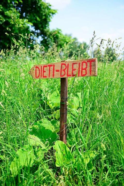 Ein Wegweiser zum besetzten Waldstück.    Foto: Ingo Schneider