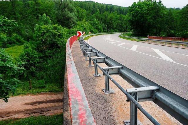 Planung für neuen Radweg entlang der B 316 zum Waidhof vorgestellt