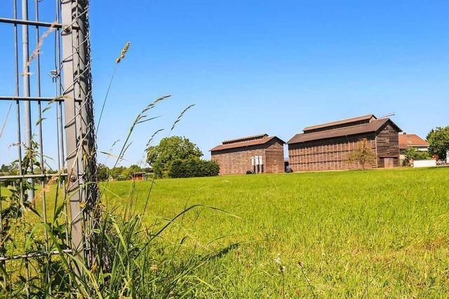 Gemeinderat Ringsheim gibt grünes Licht für das Bauhofgebiet