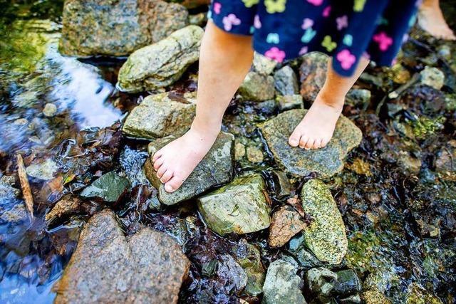 In Kippenheim ist eine Waldgruppe für Kinder geplant
