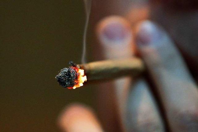 Polizei konfisziert Cannabis, Ecstasy und Amphetamin