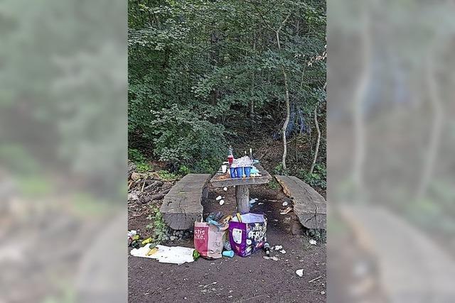 Müllansammlung am Waldrand