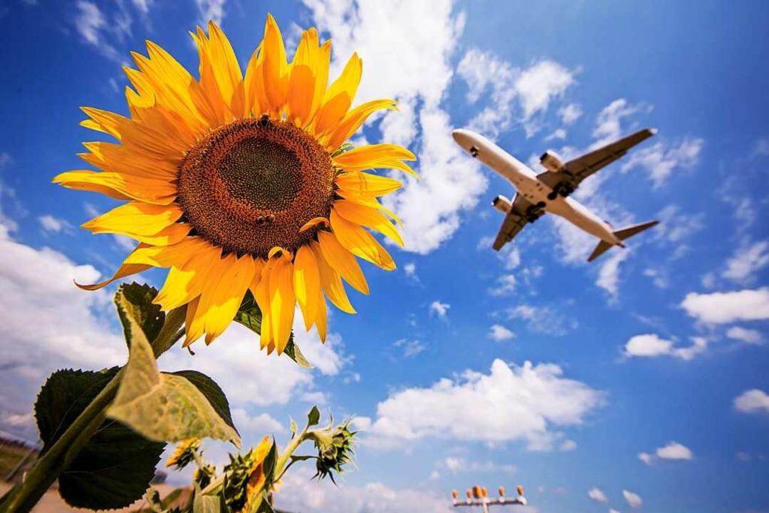 Klimaschutz bedeutet häufig Verzicht &...e aufs Urlaubsreisen mit dem Flugzeug.  | Foto: Christoph Schmidt (dpa)