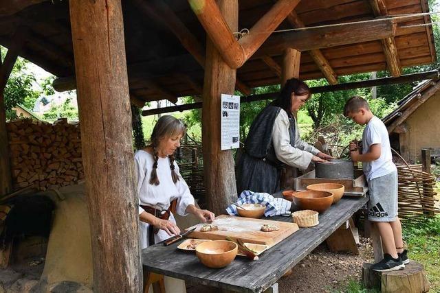 Das Alamannen-Museum in Vörstetten darf jetzt Hanf anbauen