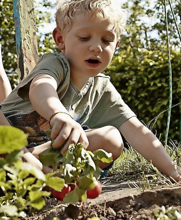 Freude über eigene Erdbeeren  | Foto: Rainer Holz (dpa)