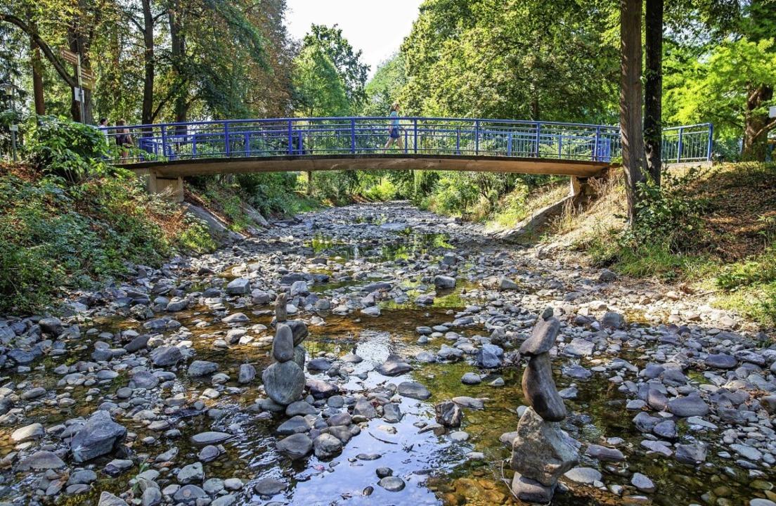 Der Fluss Neumagen in Bad Krozingen  führte im Dürrejahr 2020 kaum noch Wasser.     Foto: Philipp von Ditfurth (dpa)
