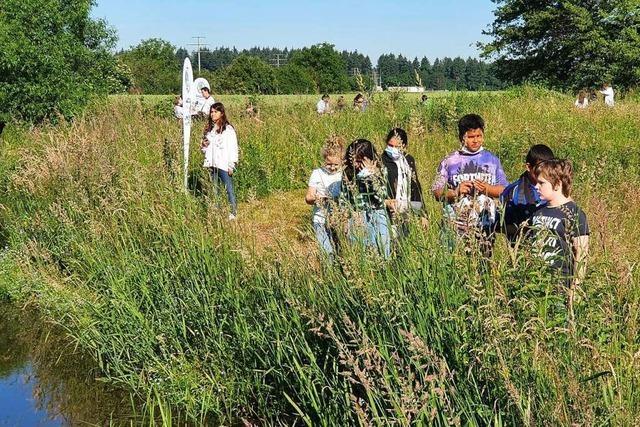 Schülerpiraten suchen Mikroplastik in Emmendinger Biotop