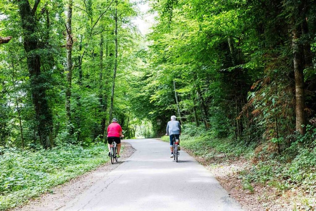 Die Stadt und ihre Umgebung erkunden kann man bei der Tour des Waldkirch    Foto: Gabriele Zahn