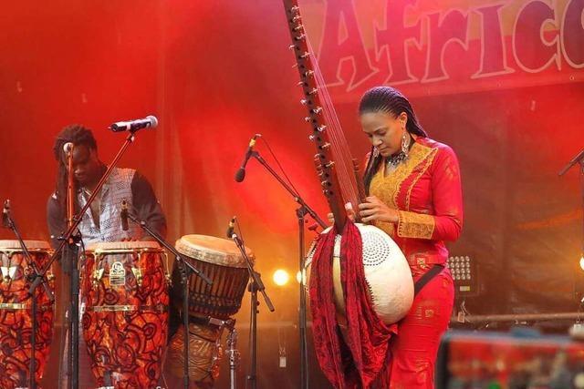 20. Auflage des African-Music-Festivals wird ins kommende Jahr verschoben