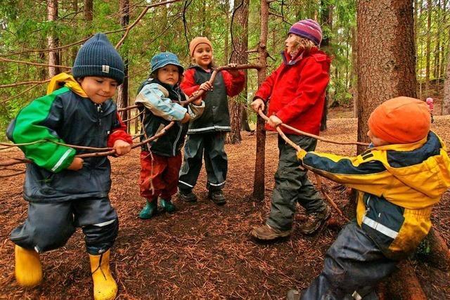 Waldgruppe findet Zustimmung des Gemeinderats