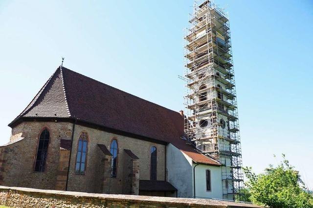 Wie die Sanierung des Nimburger Kirchturms dem Vogelschutz dient