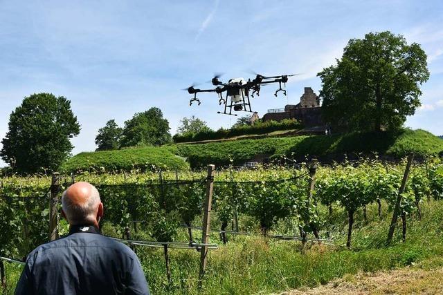 Mit der Drohne geht es zur Arbeit in den Weinberg