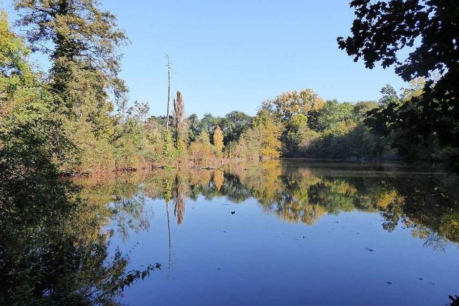 Eindrücke aus dem Landschaftspark Wiese (Foto: Rangerdienst Landschaftspark Wiese)
