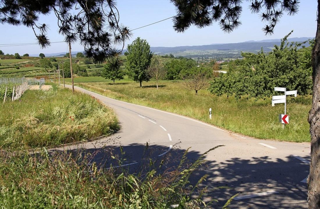 Auf rund einem Kilometer Länge werden ...in den Bereich Silberbrunnen verlegt.     Foto: Christiane Franz