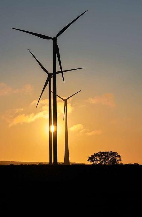 Bis zu vier Windkraftanlagen könnten b...25 an der B31 bei Rimsingen entstehen.    Foto: Patrick Pleul