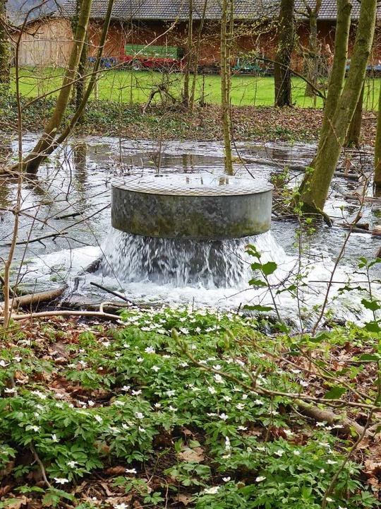 Für die Trinkwassergewinnung ist der Park von zentraler Bedeutung.  | Foto: Rangerdienst Landschaftspark Wiese