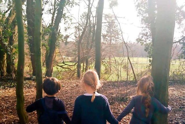 Ab Herbst übernimmt die Stadt Weil die Trägerschaft für den Waldkindergarten
