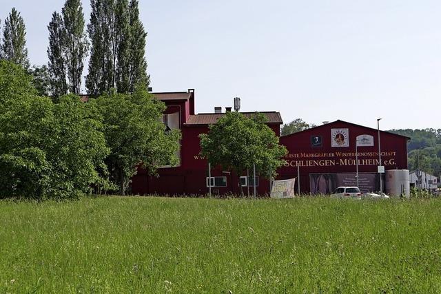 Schliengener WG erwägt Grundstücksverkauf