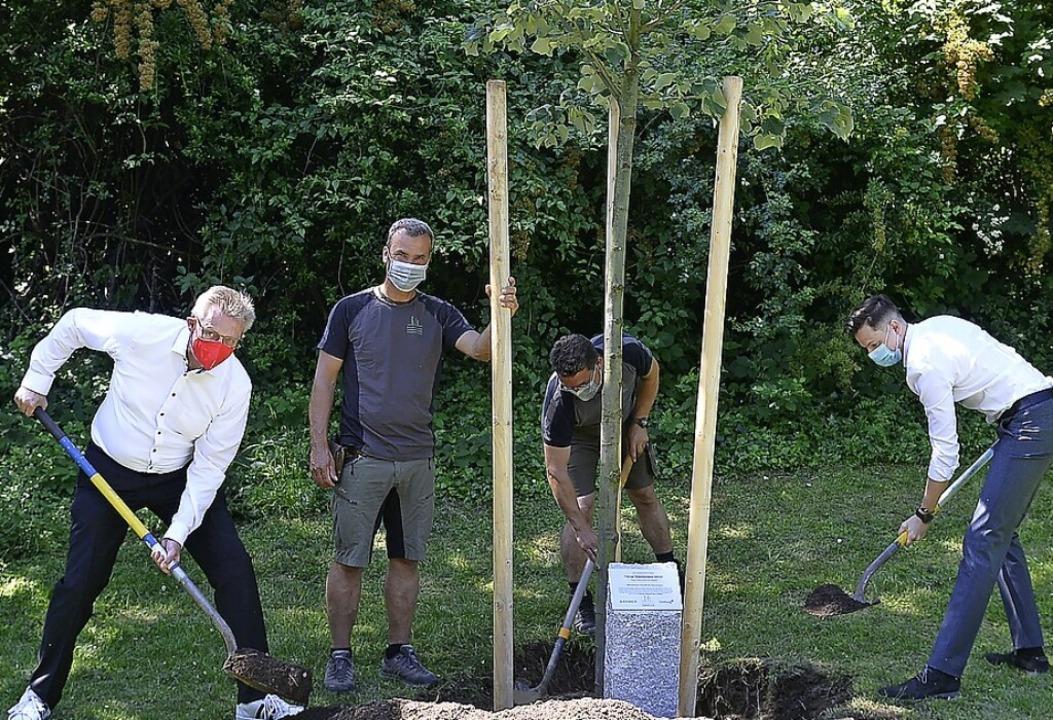 <BZ-FotoAnlauf>Bäume:</BZ-FotoAnlauf> ...(Barmer, von links) als Lindenpflanzer  | Foto: Ingo Schneider