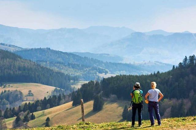 Müssen Tagestouristen im Hochschwarzwald bald einen Euro berappen?