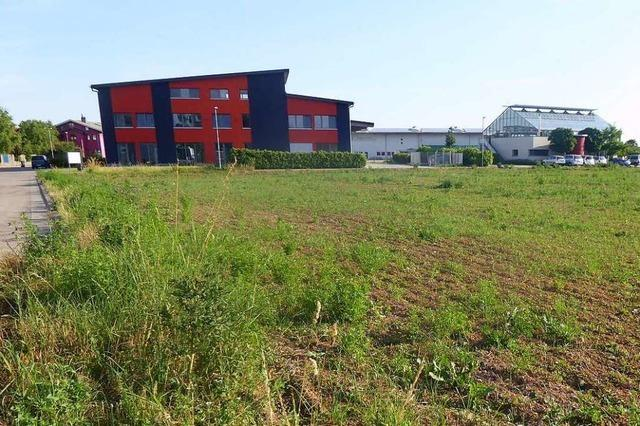 Aktion für Bürgerentscheid gegen Glücksspielstätte in Merdingen