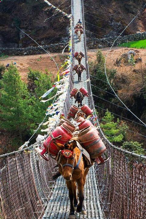 Eine Eselsbrücke ist nicht nur eine Br...ndern bedeutet auch: Erinnerungshilfe.  | Foto: OKSANA BELIKOVA