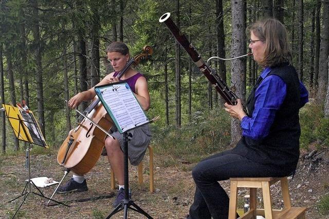 Ein kleines Musikfestival im Wald