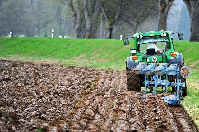 March will mit Vergaberegeln von Pachtland auch Ökolandbau fördern