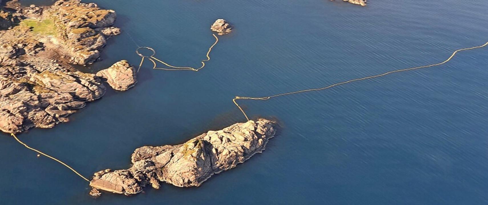 Auf den Lofoten im Norden Norwegens si.... Sie sollen junge Zwergwale abfangen.  | Foto: --- (dpa)