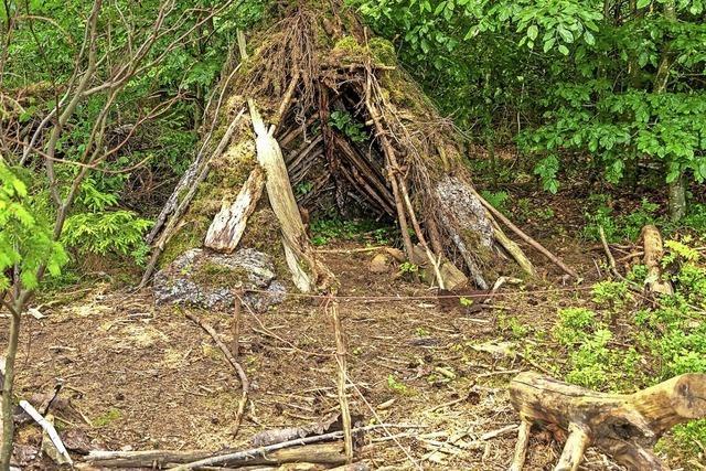 Begeisterung für die Waldhütte