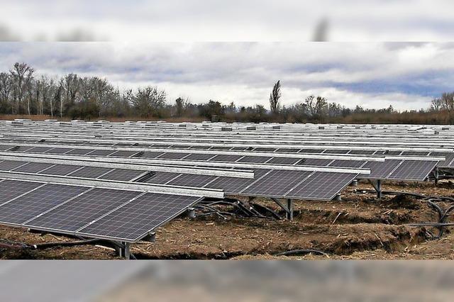 Solarparkbetreiber erwarten auch dieses Jahr ein gutes Geschäft