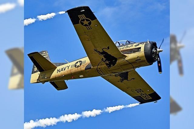 Flying-Bulls-Pilot stirbt bei Absturz