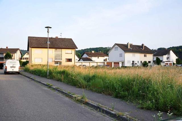 In Schliengen gibt es Konflikte um als zu massiv empfundene Neubauten